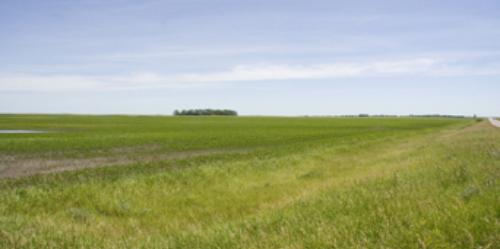 Near the original homestead - picture taken in 2005